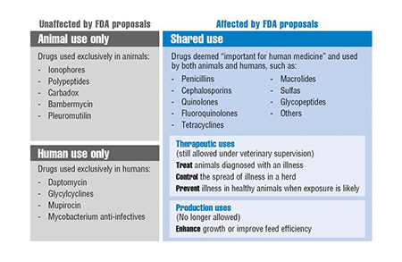 Antibiotics Affected by VFD Rule
