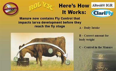 How Fly Control Works