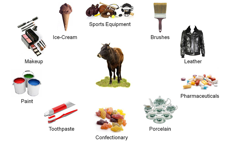 Beef Cattle By Products